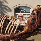 Rožnění uherského (martinického) býka
