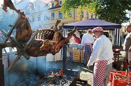 Obnovená tradice – Rožnění uherského (martinického) býka ve Slaném