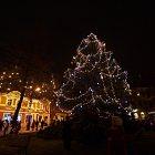 Slavnost světla. Rozsvícení vánočního stromu, 25.11.2011