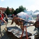 Rožnění uherského býka