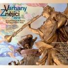 Varhany znějící 2014 Slaný-Velvary-Zlonice & Petrovice a Dolní Hbity (titul CD)